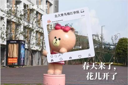 北大青鸟成都锦江校区校区环境