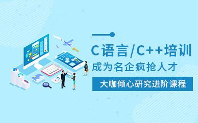 C#程序设计专业培训